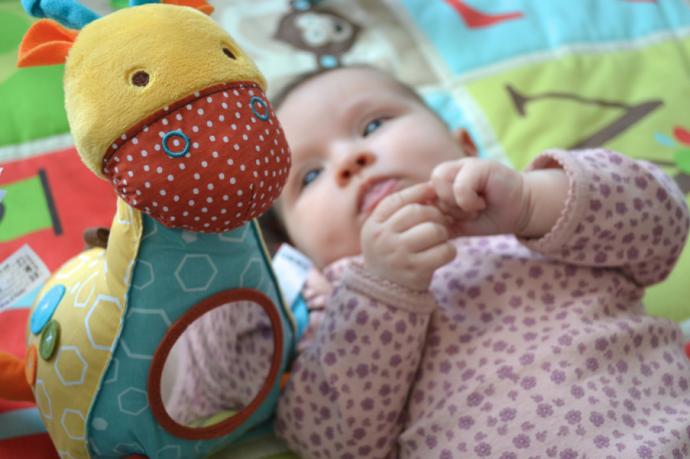 dagens lucka leksaker