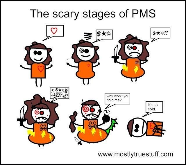 vad står pms för