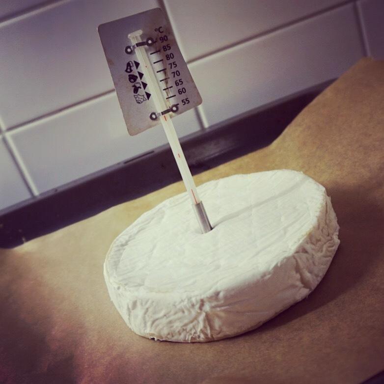 brie ost gravid