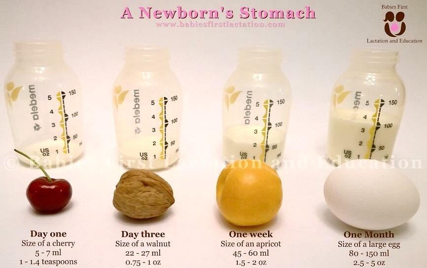 hur många ml bröstmjölk nyfödd