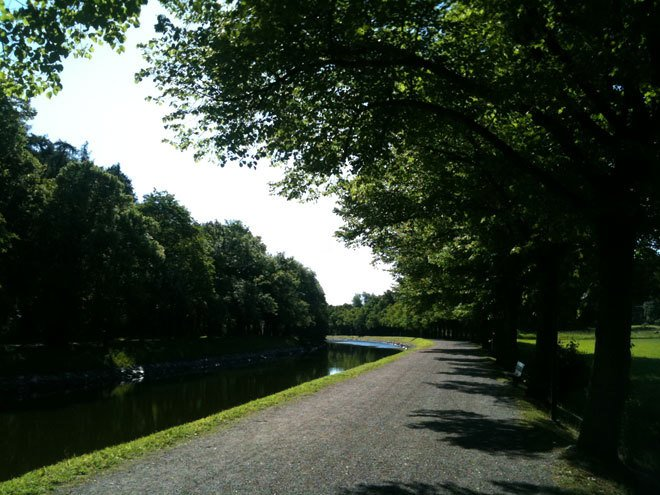 Promenera på Djurgården.