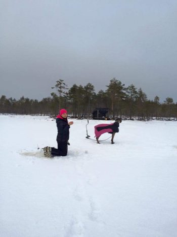 Pimpelhund