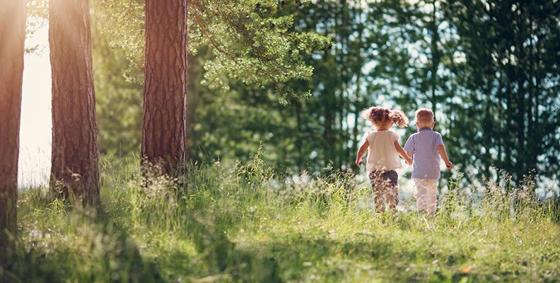 Naturreservat - bortglömd sommarpärla